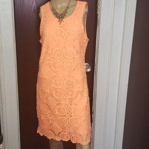 Ladys Fashion lace organs dress